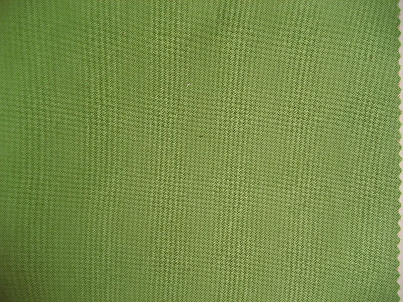 suede fabric(xs-13)